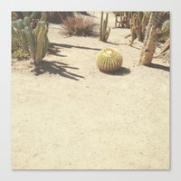 cacti Canvas Prints featuring Cacti by Amber Barkley