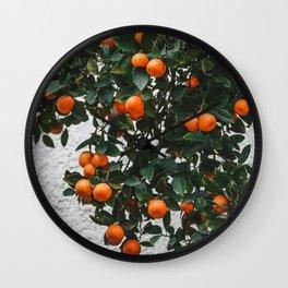 Orange tree in Tel Aviv Israel   Fine Art Photography Wall Clock