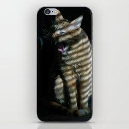 Gato espacial iPhone Skin
