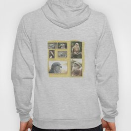 birds of prey Hoody