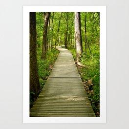 Forest Boardwalk Art Print
