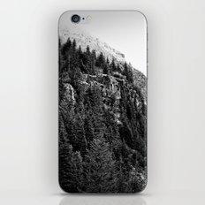 Mountain Valley Fog iPhone & iPod Skin