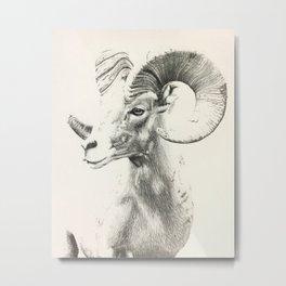 ASCEND Metal Print