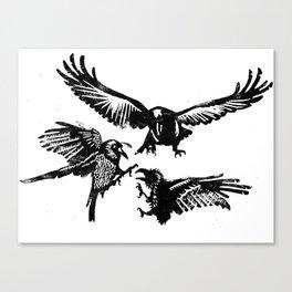 Crow Parliament Canvas Print