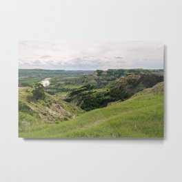 View of Theodore Roosevelt Park Metal Print