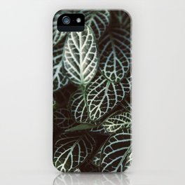 Botanical Gardens - Zebra Leaf #398 iPhone Case