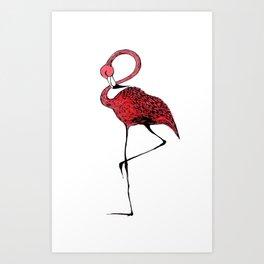 Mr. Flamingo Art Print