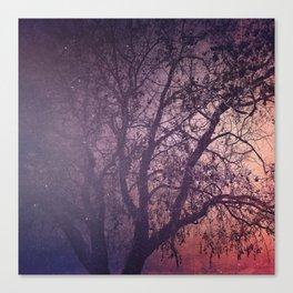 Darkest Hour Canvas Print