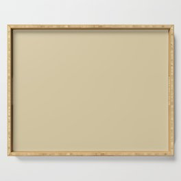Sherwin Williams Trending Colors of 2019 Ancestral Gold (Pastel Light Brown) SW 6407 Serving Tray