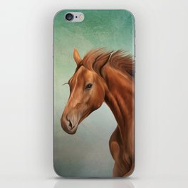 Drawing portrait horse iPhone Skin