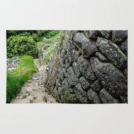 Peru Stairway to Nowhere Rug