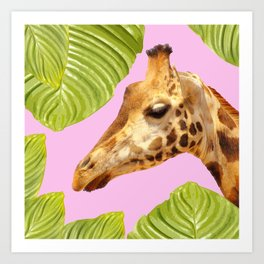 Giraffe with green leaves on a pink background Art Print