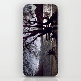 Bench and Lake iPhone Skin