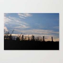 Trapped to be free Canvas Print