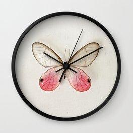 Pink Glasswing  Wall Clock