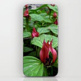 'Trillium' iPhone Skin