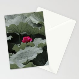 Nature's Pink Stationery Cards
