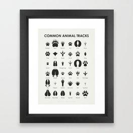 Common Animal Tracks Framed Art Print