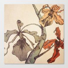 Hello Orchids Canvas Print