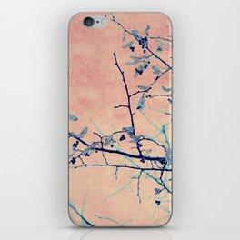 winter whispers iPhone Skin