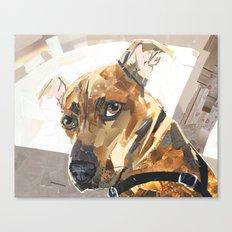 Jonesy Canvas Print