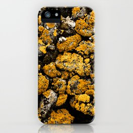 Gold Stone Mold iPhone Case