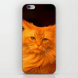 Red cat iPhone Skin