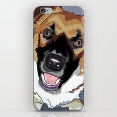 Trina Dog iPhone & iPod Skin