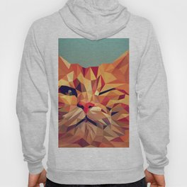 Geometric cat 2 Hoody