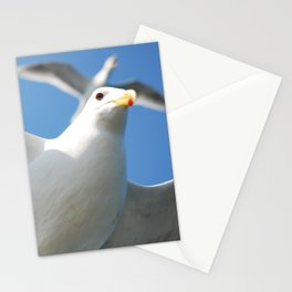 Flight buddies! Stationery Cards