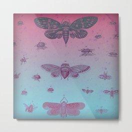 Cool Bugs Metal Print