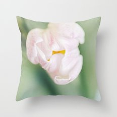 A Glimpse of things to come Throw Pillow