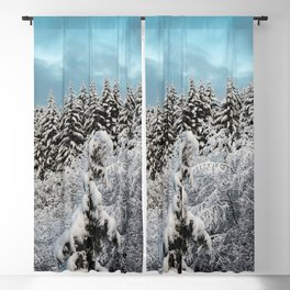Winter Woods - Snow Capped Forest Adventure Nature Photography Blackout Curtain