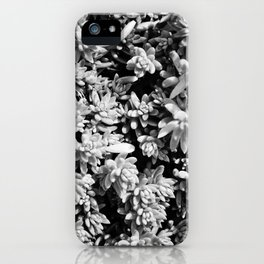 Succulent circle iPhone Case