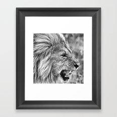Lion head black and white Framed Art Print
