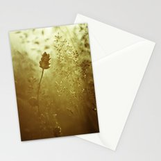 Summer of 76 Stationery Cards