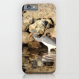 Heron Chasing Fish iPhone Case