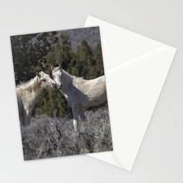 Wild Horses with Playful Spirits No 1 Stationery Cards