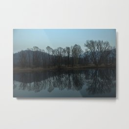 forest mirrored in the river Metal Print