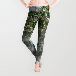 Mother Earth Leggings