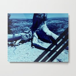 Blue Grid on Nature Metal Print