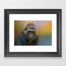Portrait of a Gorilla Framed Art Print