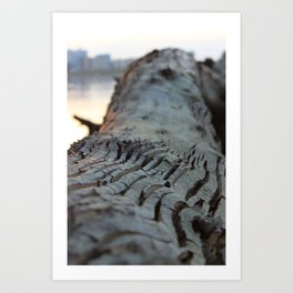 albero sapiente Art Print