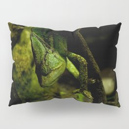 Blended Green Pillow Sham