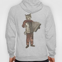 Accordion Cat with Goggles and Mask Hoody