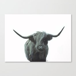 Highlander Canvas Print