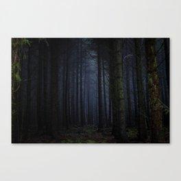 The Dark & Eerie Woods (Color) Canvas Print