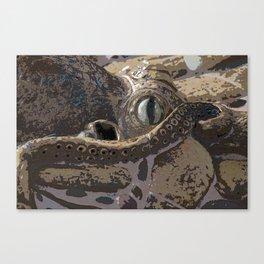 Curious Octopus Canvas Print