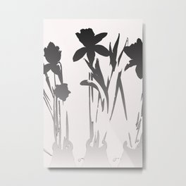 Art Photography Daffodils in Black and White Metal Print