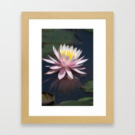 Aquatic pastel flower Framed Art Print